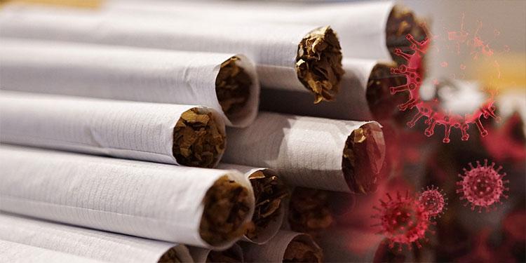 En estudio un posible rol protector de la nicotina ante la covid-19