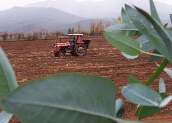 Presidente Hernández: Productores reciben préstamos de 'Agrocrédito 8.7.' (Video)
