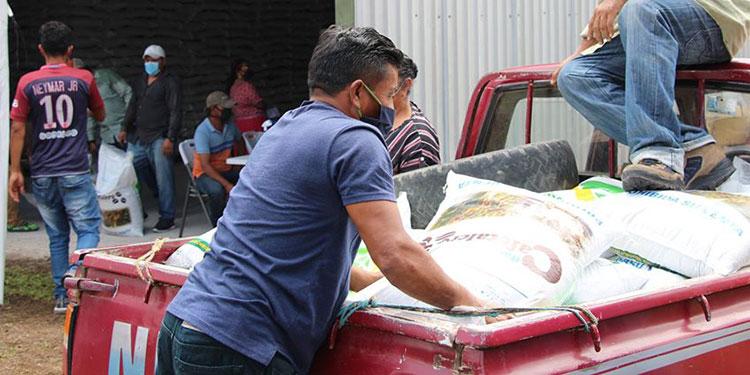 Un total de 1,200 productores de café fueron los beneficiados con la entrega de fertilizantes.