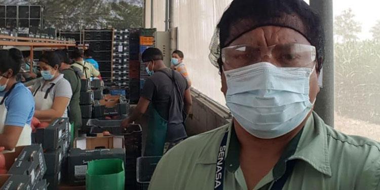 Más de 120 inspectores trabajan supervisando alrededor de 100 establecimientos.