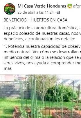 """Cuarentena inspira a """"catracha"""" a enseñar horticultura gratis"""