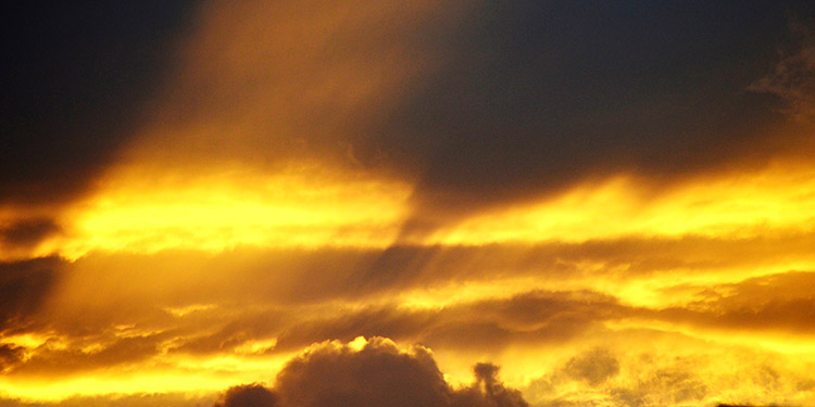 En la angustia y la desesperación Dios no está lejos
