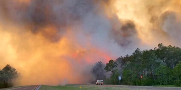 Cientos son evacuados por incendios forestales en Florida