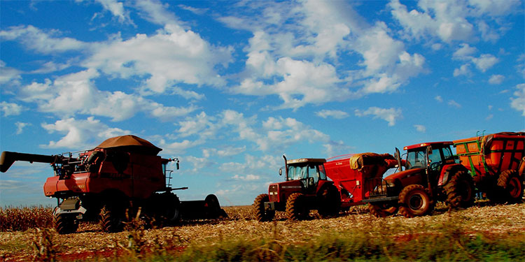 Congreso pide a Trump parar las importaciones agrícolas