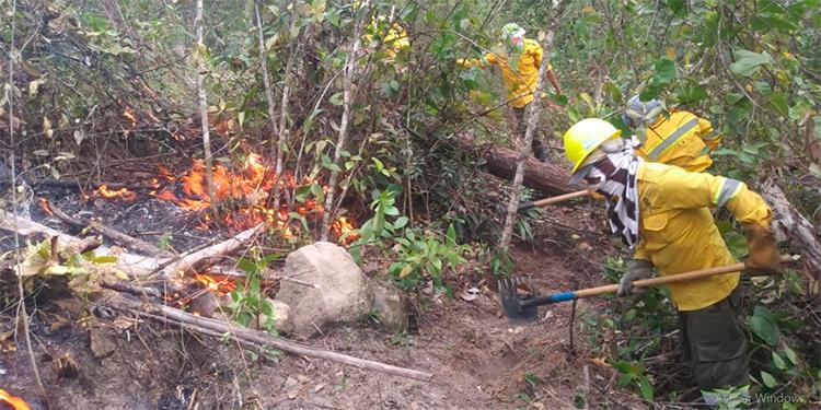 Mi Ambiente negará licencias ambientales en zonas que registren incendios forestales