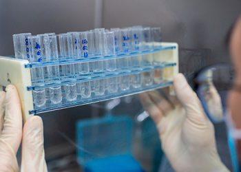 El BEI financia con €75 millones a CureVac, que desarrolla vacuna contra COVID-19