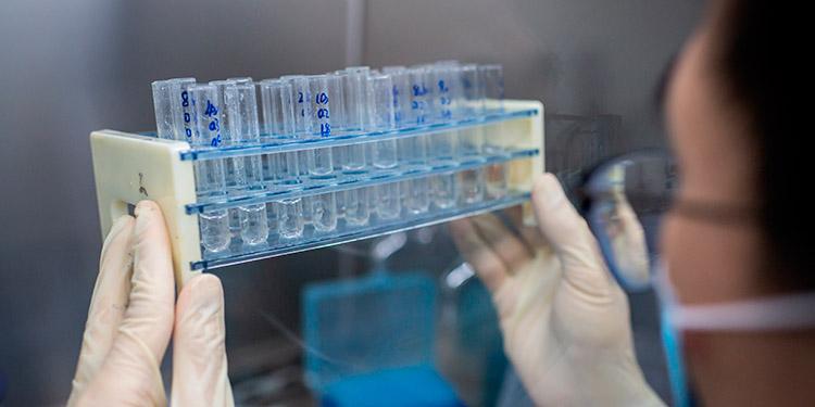 Piden no sacar conclusiones de interrupción del ensayo de vacuna contra la COVID-19