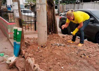 Dejan veneno y vidrio molido en comedores para perros en colonia Hato de Enmedio
