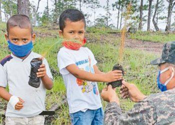 Los miembros de las Fuerzas Armadas se incorporaron a la siembra de árboles en áreas afectadas por los incendios, el gorgojo descortezador y la mano criminal del hombre.