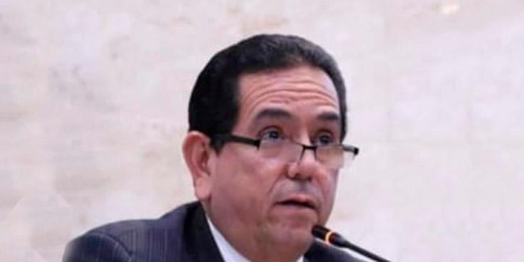 Diputados manifiestan su apoyo al presidente Guaidó