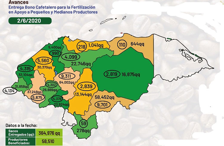 $713.65 millones dejan las exportaciones de café
