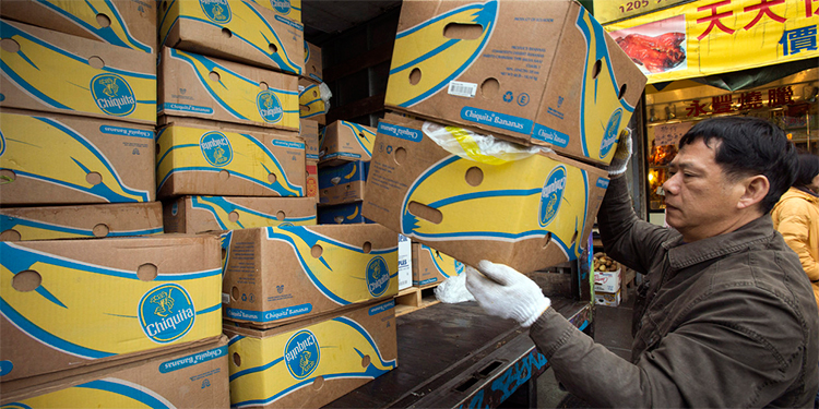 Chiquita Banana deja Puerto Cortés, ahora exportará desde Guatemala