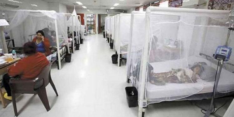 Más de 13,000 casos de dengue se reportan a nivel nacional.