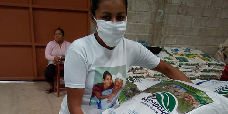 3,028 productores de la Cadena de Frijol reciben el Bono de Solidaridad Productiva