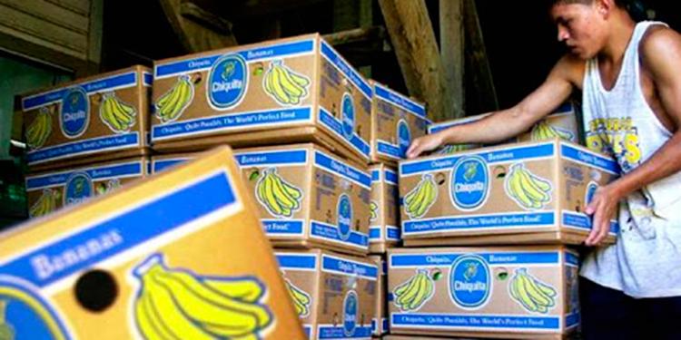 Chiquita Brands mantiene 3,700 hectáreas de cultivo en Honduras