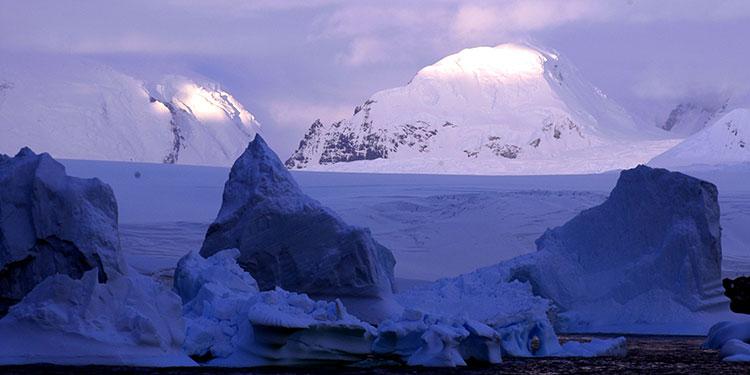 Hallan microplásticos en el ecosistema terrestre de la Antártida