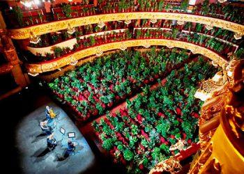 Teatro Liceu reanuda actividades con un concierto ante 2,292 plantas