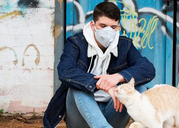 Alemania: casos de coronavirus en mascotas deben reportarse