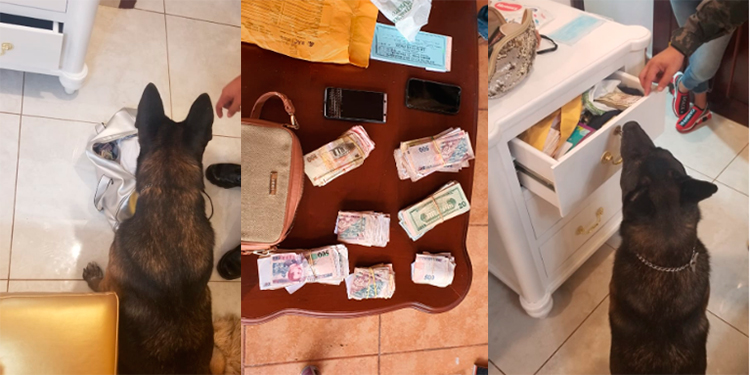 Más de 300 mil lempiras y 17 mil dólares decomisan en casa de La Ceiba