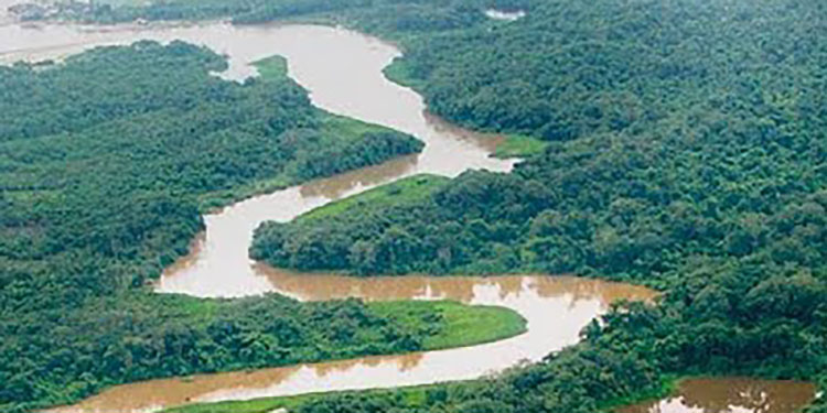 Destinan $65 millones a proyectos ambientales