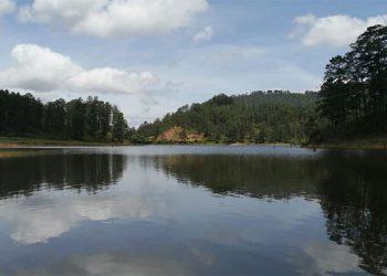 Piden frenar parcelación en zona de la laguna San Julián