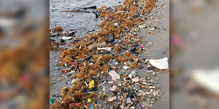 La mayoría de residuos se filtra por debajo de la biobarda, que no tiene la capacidad para retener tantas toneladas de basura.