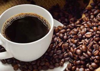 La meta este año es vender 8.5 millones de quintales de café al mercado internacional y generar mil millones de dólares en divisas.