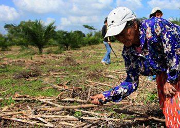 Listo sistema de alerta contra efectos de sequía