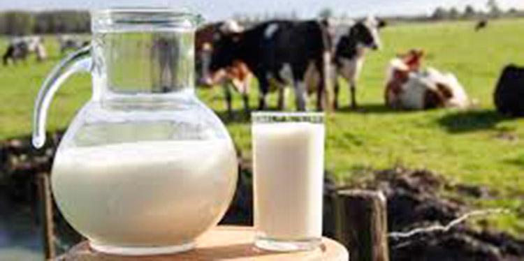 Presidente de Cahle: Producción de leche sube a 1.6 millones de litros diarios