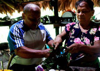Indígenas ahuyentan la muerte por COVID-19 con medicina ancestral