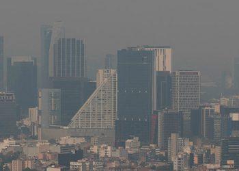 Científicos alertan que el ozono ya amenaza la biodiversidad de todo el mundo