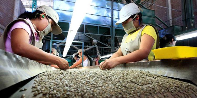 Un 40% del café se vendió con sobreprecio aplaude empresario