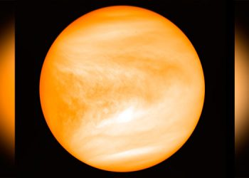 Hallan indicios de potencial vida en atmósfera de Venus