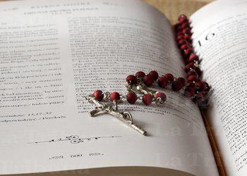 Conferencia Episcopal crea la 'Asociación de Biblistas Católicos de Honduras'