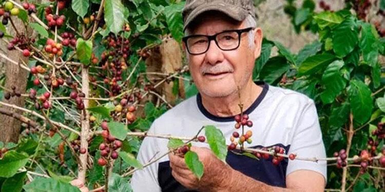 7 millones de quintales de café se proyecta exportar en la cosecha 2020-2021.