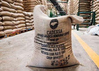La bioseguridad un nuevo costo en cadena del café