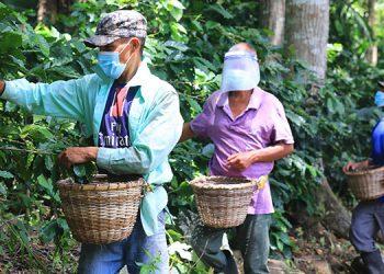 """El Presidente Hernández dijo que """"en esta pandemia tenemos que ser responsables todos con las medidas de bioseguridad""""."""