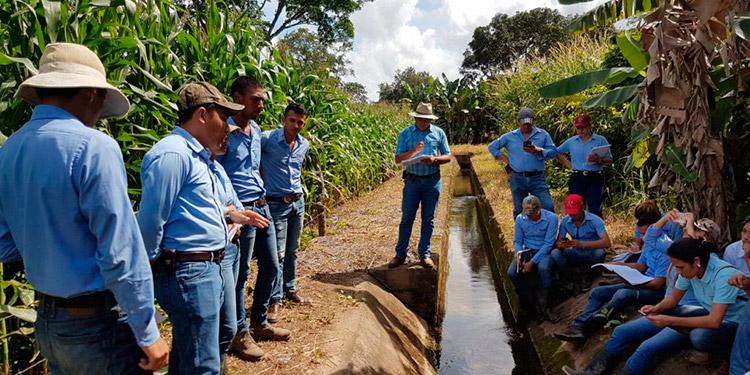 UNAG desarrolla plataforma para liderar producción agroalimentaria post-COVID-19