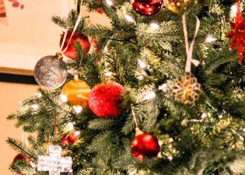 Celebran Navidad para un niño de 3 años le quedan escasos días de vida