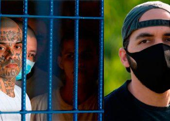 Pandillas, ¿el poder tras el milagroso descenso de homicidios en El Salvador?
