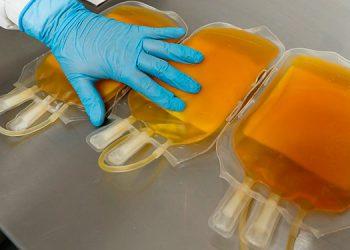 El tratamiento del coronavirus con plasma, un 'rayo de esperanza' en Egipto