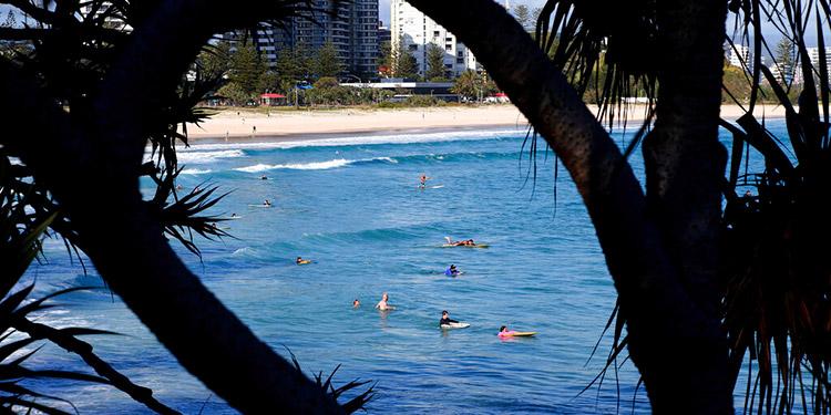 Tiburón mata a un surfista en la costa de Australia