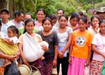 Informe OIMH: Pobreza y desempleo azotan a tolupanes