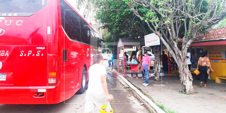 Cierran 3 empresas de transporte en La Ceiba por incumplir medidas de bioseguridad