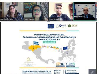 En el taller virtual dirigido a empresas participaron miembros del SIECA, entre otros.