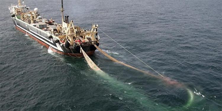 Congreso de Costa Rica aprueba polémica ley de pesca de arrastre