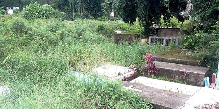 Muchos se han olvidado de ir a limpiar las tumbas de sus parientes en el Cementerio General de Tela.