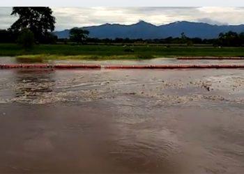 Las biobardas en la cuenca del Motagua, que tiene una extensión de 500 kilómetros.