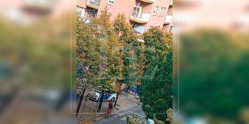 Hondureña muere al lanzarse de un balcón en España