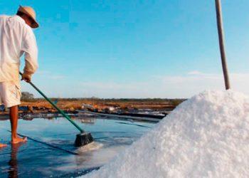 Producen 1.3 millones de quintales de sal pese a la pandemia